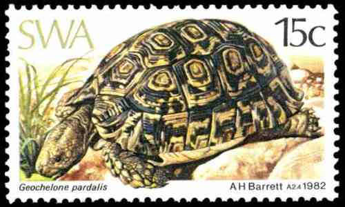 Geochelone pardalis (Leopard tortoise), issued in 1982, artist: Arthur Howard Barrett